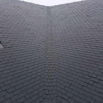 dak in natuurleien